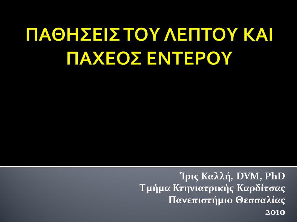 Κριτήρια διάγνωσης  Χρονιότητα  Μη ανταπόκριση σε υποαλλεργικό σιτηρέσιο  Αποκλεισμός άλλων νόσων  Ιστοπαθολογικά ευρήματα ΔΙΑΓΝΩΣΗ  Πρεδνιζολόνη: 1 – 2 mg/Kg ΣΒ SID ή διαιρεμένη σε 2 δόσεις +/- αζαθειοπρίνη  Διαιτητικά μέτρα  Αντιβιοτικά (μετρονιδαζόλη) ΘΕΡΑΠΕΙΑ