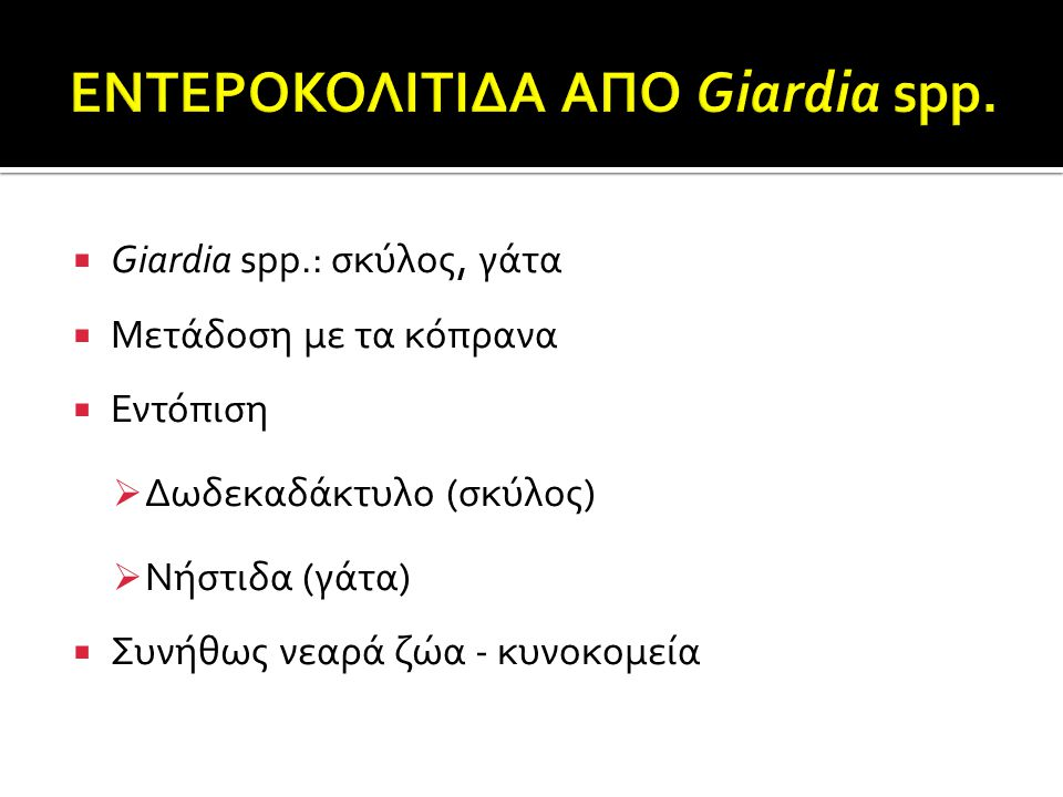  Giardia spp.: σκύλος, γάτα  Μετάδοση με τα κόπρανα  Εντόπιση  Δωδεκαδάκτυλο (σκύλος)  Νήστιδα (γάτα)  Συνήθως νεαρά ζώα - κυνοκομεία