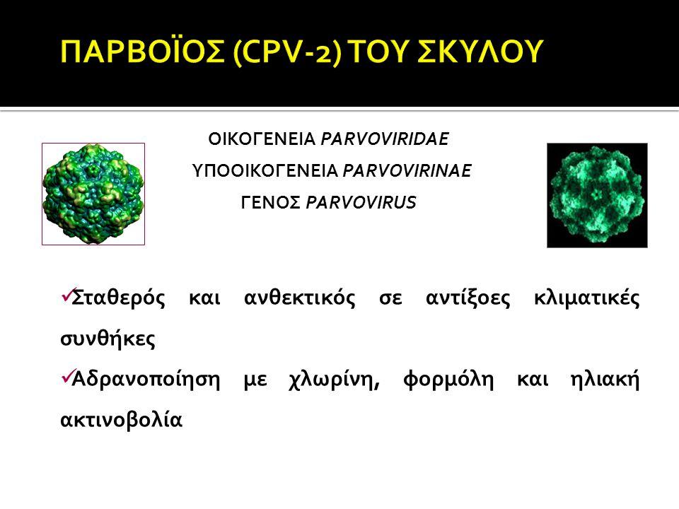  Canine corona virus  Συνήθως σε νεαρά ζώα - κυνοκομεία (συνωστισμός)  Μετάδοση με τα κόπρανα  Προσβολή λαχνών  Υποκλινική νόσος  Οξεία γαστρεντερίτιδα