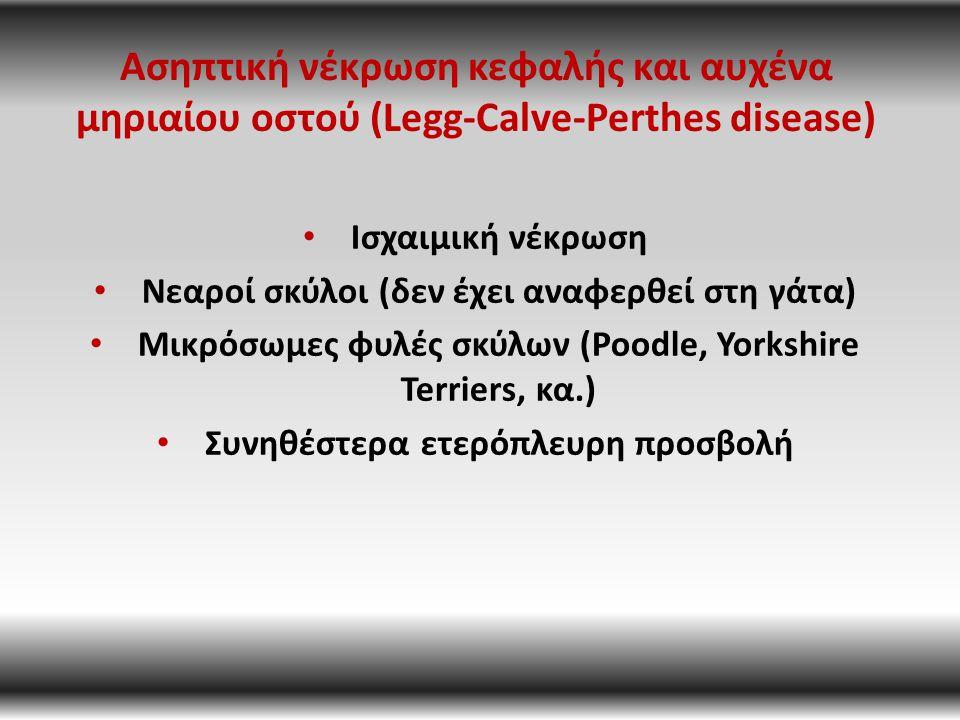 Ασηπτική νέκρωση κεφαλής και αυχένα μηριαίου οστού (Legg-Calve-Perthes disease) Ισχαιμική νέκρωση Νεαροί σκύλοι (δεν έχει αναφερθεί στη γάτα) Μικρόσωμες φυλές σκύλων (Poodle, Yorkshire Terriers, κα.) Συνηθέστερα ετερόπλευρη προσβολή