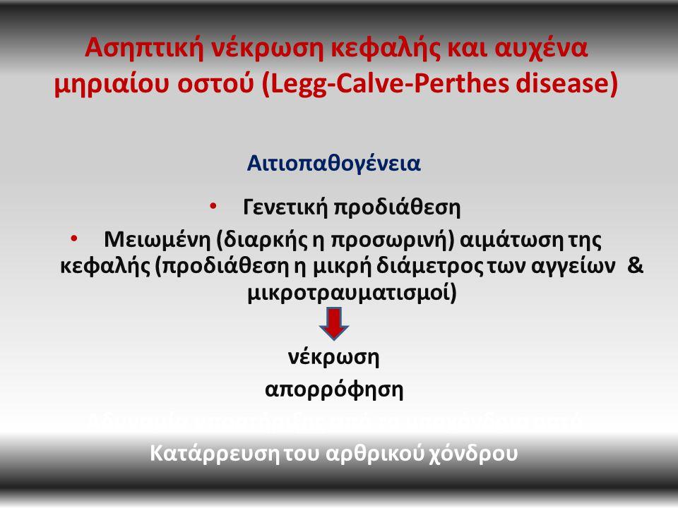 Ασηπτική νέκρωση κεφαλής και αυχένα μηριαίου οστού (Legg-Calve-Perthes disease) Αιτιοπαθογένεια Γενετική προδιάθεση Μειωμένη (διαρκής η προσωρινή) αιμάτωση της κεφαλής (προδιάθεση η μικρή διάμετρος των αγγείων & μικροτραυματισμοί) νέκρωση απορρόφηση Αδυναμία υποστήριξης από το υποχόνδριο οστό Κατάρρευση του αρθρικού χόνδρου