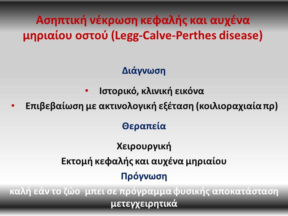 Ασηπτική νέκρωση κεφαλής και αυχένα μηριαίου οστού (Legg-Calve-Perthes disease) Διάγνωση Ιστορικό, κλινική εικόνα Επιβεβαίωση με ακτινολογική εξέταση (κοιλιοραχιαία πρ) Θεραπεία Χειρουργική Εκτομή κεφαλής και αυχένα μηριαίου Πρόγνωση καλή εάν το ζώο μπει σε πρόγραμμα φυσικής αποκατάσταση μετεγχειρητικά