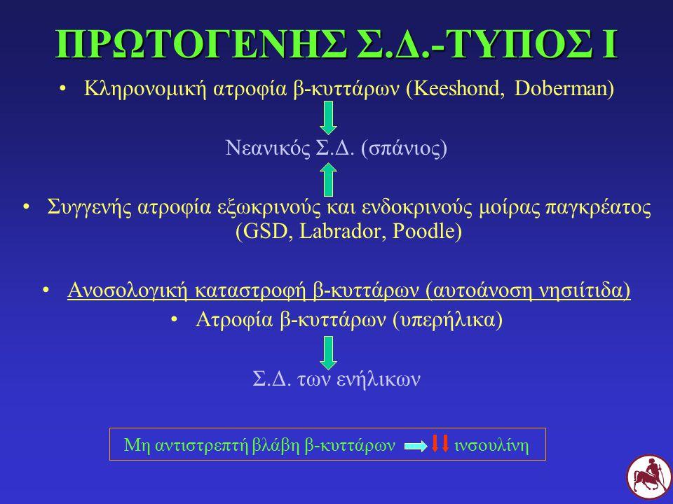 ΔΙΑΓΝΩΣΤΙΚΗ ΔΙΕΡΕΥΝΗΣΗ ΙΝΣΟΥΛΙΝΟΑΝΤΟΧΗΣ CBC Βιοχημική (και λιπάση, αμυλάση, τριγλυκερίδια) Ανάλυση ούρων Καλλιέργεια ούρων TLI, PLI ΣΠρογεστερόνη (μη στειρωμένοι θηλυκοί Σ) Ινσουλίνη 24 ώρες μετά την τελευταία έγχυση (αυξημένη συγκέντρωση λόγω αντισωμάτων κατά της ινσουλίνης) GH ή IGF-I LDDST, δοκιμή διέγερσης με ACTH T 4, fT 4, TSH, κλπ Υπέρηχος κοιλίας Ακτινογραφία θώρακα ΓCT ή MRI υπόφυσης (σε περίπτωση αυξημένου IGF-I στη Γ)
