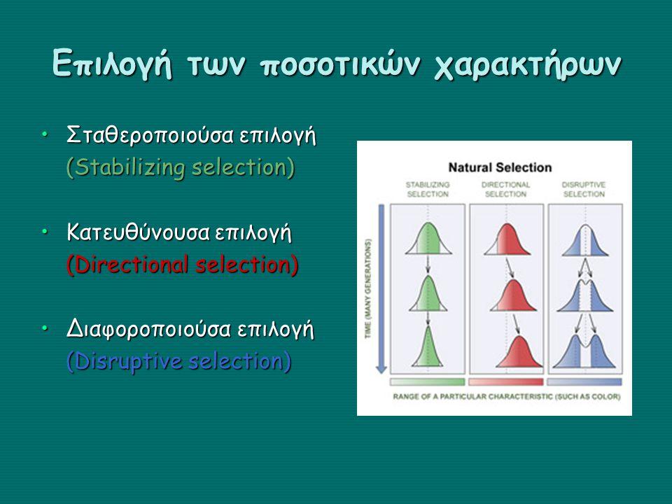 Επιλογή των ποσοτικών χαρακτήρων Σταθεροποιούσα επιλογήΣταθεροποιούσα επιλογή (Stabilizing selection) Κατευθύνουσα επιλογήΚατευθύνουσα επιλογή (Direct