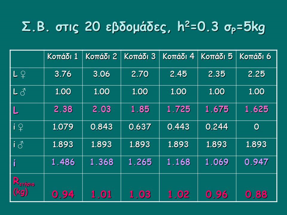 Σ.Β. στις 20 εβδομάδες, h 2 =0.3 σ P =5kg Κοπάδι 1 Κοπάδι 2 Κοπάδι 3 Κοπάδι 4 Κοπάδι 5 Κοπάδι 6 L L ♀3.763.062.702.452.352.25 L L ♂1.001.001.001.001.0