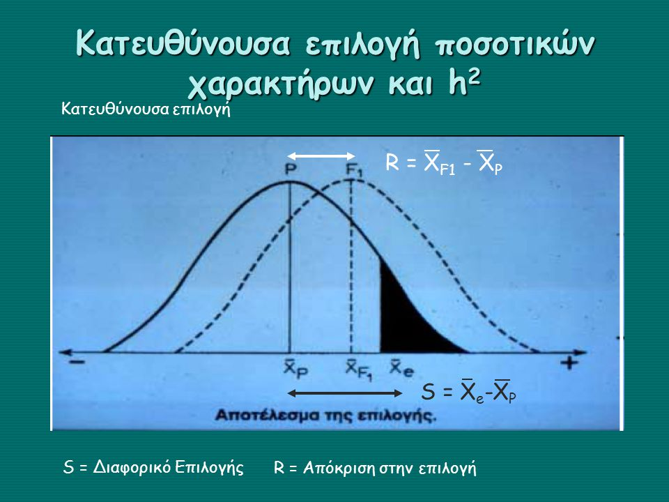 Κατευθύνουσα επιλογή ποσοτικών χαρακτήρων και h 2 S = X e -X P R = X F1 - X P S = Διαφορικό Επιλογής R = Απόκριση στην επιλογή Κατευθύνουσα επιλογή