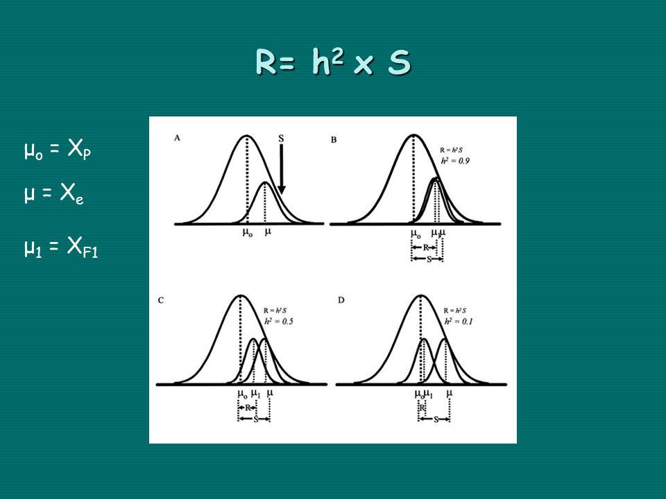 R= h 2 x S μ ο = Χ Ρ μ = Χ e μ 1 = X F1