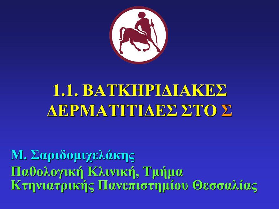 1.Εισαγωγή Σ 2.Επιπολής βακτηριδιακές δερματίτιδες (Σ): επιπολής βακτηριδιακή θυλακίτιδα, επιπολής εξαπλούμενη βακτηριδιακή δερματίτιδα Σ 3.Εν τω βάθει βακτηριδιακές δερματίτιδες (Σ): των κάλων, ποδοδερματίτιδα, των Γερμανικών ποιμενικών, πυοτραυματική θυλακίτιδα- δοθιήνωση, υποδερματίτιδα 4.Διαγνωστική προσέγγιση 5.Θεραπευτική αντιμετώπιση ΔΟΜΗ ΜΑΘΗΜΑΤΟΣ