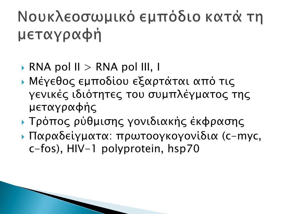  RNA pol II > RNA pol III, I  Μέγεθος εμποδίου εξαρτάται από τις γενικές ιδιότητες του συμπλέγματος της μεταγραφής  Τρόπος ρύθμισης γονιδιακής έκφρασης  Παραδείγματα: πρωτοογκογονίδια (c-myc, c-fos), HIV-1 polyprotein, hsp70