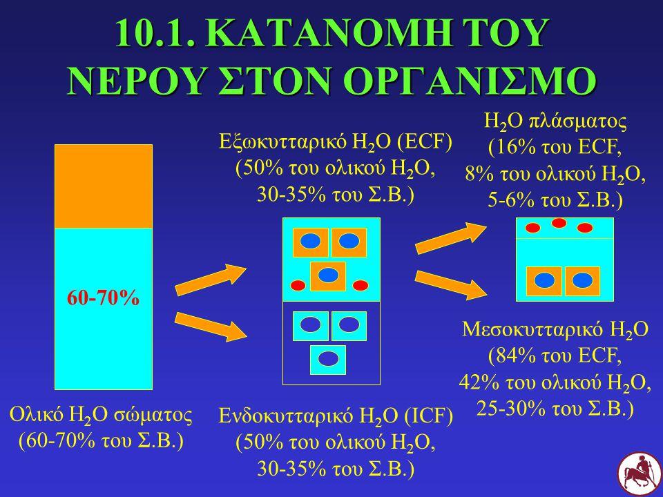 10.1. ΚΑΤΑΝΟΜΗ ΤΟΥ ΝΕΡΟΥ ΣΤΟΝ ΟΡΓΑΝΙΣΜΟ 60-70% Ολικό Η 2 Ο σώματος (60-70% του Σ.Β.) Ενδοκυτταρικό Η 2 Ο (ICF) (50% του ολικού Η 2 Ο, 30-35% του Σ.Β.)