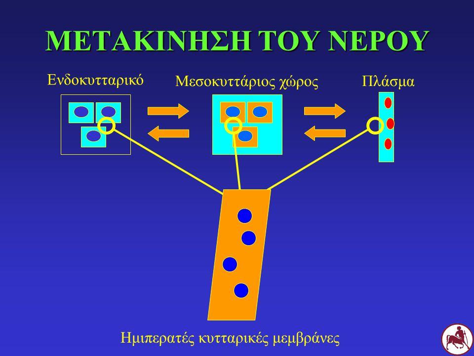 ΜΕΤΑΚΙΝΗΣΗ ΤΟΥ ΝΕΡΟΥ Ενδοκυτταρικό Μεσοκυττάριος χώροςΠλάσμα Ημιπερατές κυτταρικές μεμβράνες