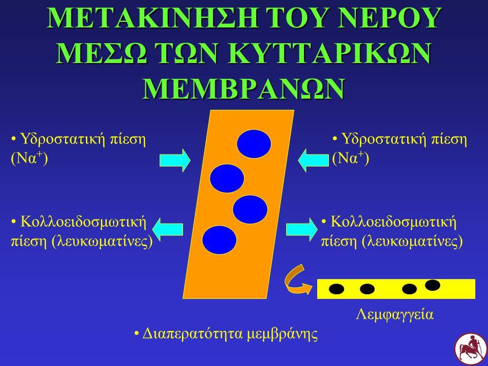 ΜΕΤΑΚΙΝΗΣΗ ΤΟΥ ΝΕΡΟΥ ΜΕΣΩ ΤΩΝ ΚΥΤΤΑΡΙΚΩΝ ΜΕΜΒΡΑΝΩΝ Υδροστατική πίεση (Να + ) Κολλοειδοσμωτική πίεση (λευκωματίνες) Υδροστατική πίεση (Να + ) Κολλοειδο