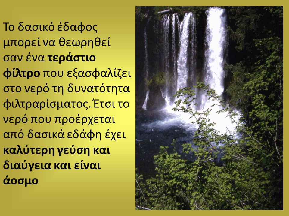 Το δασικό έδαφος μπορεί να θεωρηθεί σαν ένα τεράστιο φίλτρο που εξασφαλίζει στο νερό τη δυνατότητα φιλτραρίσματος. Έτσι το νερό που προέρχεται από δασ