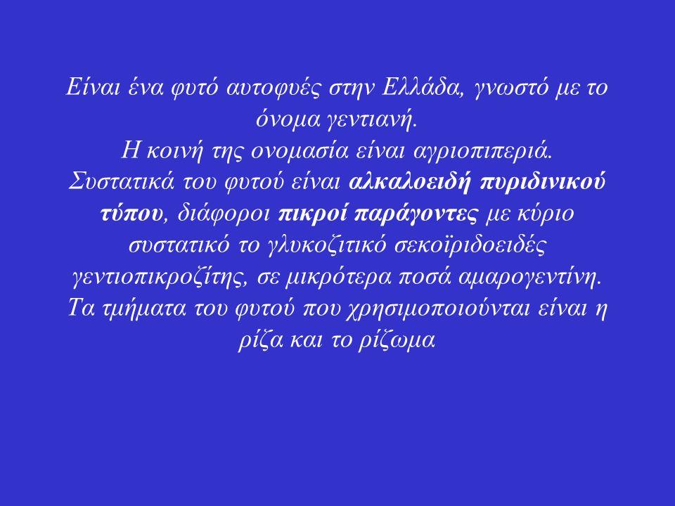 Είναι ένα φυτό αυτοφυές στην Ελλάδα, γνωστό με το όνομα γεντιανή.