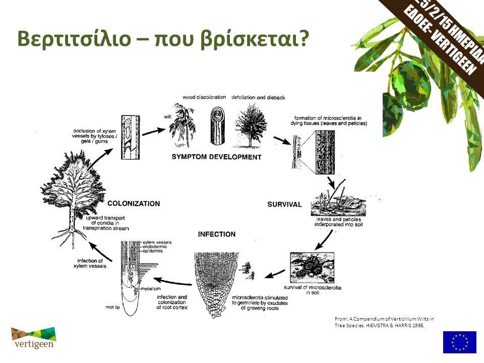 25/2/15 ΗΜΕΡΙΔΑ ΕΔΟΕΕ- VERTIGEEN Βερτιτσίλιο – που βρίσκεται? From: A Compendium of Verticillium Wilts in Tree Species. HIEMSTRA & HARRIS 1998.