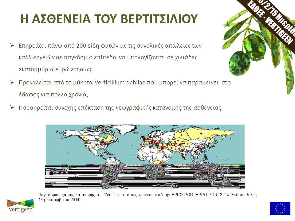 25/2/15 Ημερίδα ΕΔΟΕΕ - VERTIGEEN  Επηρεάζει πάνω από 200 είδη φυτών με τις συνολικές απώλειες των καλλιεργειών σε παγκόσμιο επίπεδο να υπολογίζονται