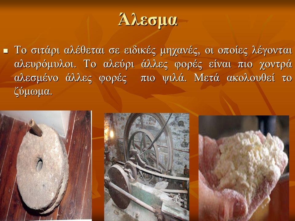 Άλεσμα Το σιτάρι αλέθεται σε ειδικές μηχανές, οι οποίες λέγονται αλευρόμυλοι. Το αλεύρι άλλες φορές είναι πιο χοντρά αλεσμένο άλλες φορές πιο ψιλά. Με