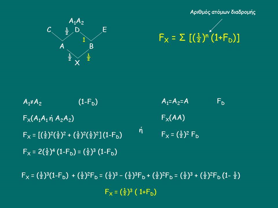 CDE A B X A1A2A1A2 A 1 ≠A 2 (1-F D ) F X (A 1 A 1 ή Α 2 Α 2 ) F X = [(½) 2 (½) 2 + (½) 2 (½) 2 ] (1-F D ) F X = 2(½) 4 (1-F D ) = (½) 3 (1-F D ) ½ ½ ή Α 1 =Α 2 =ΑF D F X (AA) F X = (½) 2 F D 1 ½ F X = (½) 3 (1-F D ) + (½) 2 F D = (½) 3 – (½) 3 F D + (½) 2 F D = (½) 3 + (½) 2 F D (1- ½) F X = (½) 3 ( 1+F D ) F X = Σ [(½) n (1+F D )] Αριθμός ατόμων διαδρομής