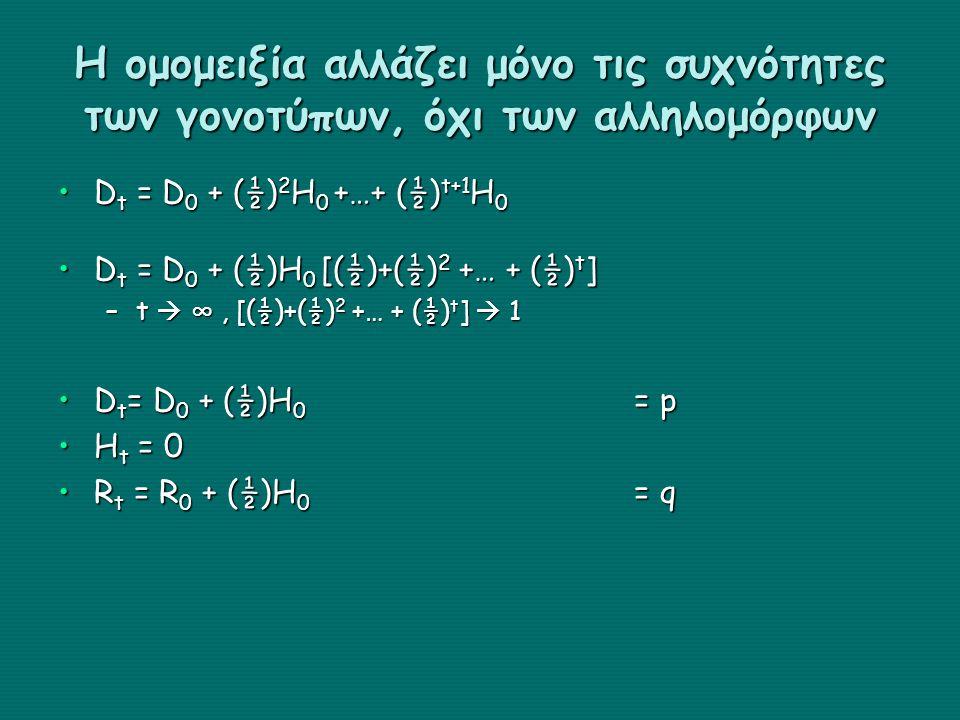 Η ομομειξία αλλάζει μόνο τις συχνότητες των γονοτύπων, όχι των αλληλομόρφων D t = D 0 + (½) 2 H 0 +…+ (½) t+1 H 0D t = D 0 + (½) 2 H 0 +…+ (½) t+1 H 0 D t = D 0 + (½)H 0 [(½)+(½) 2 +… + (½) t ]D t = D 0 + (½)H 0 [(½)+(½) 2 +… + (½) t ] –t  ∞, [(½)+(½) 2 +… + (½) t ]  1 D t = D 0 + (½)H 0 = pD t = D 0 + (½)H 0 = p H t = 0H t = 0 R t = R 0 + (½)H 0 = qR t = R 0 + (½)H 0 = q