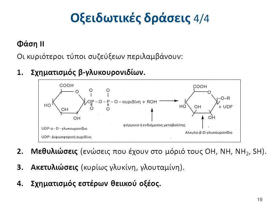 Οξειδωτικές δράσεις 4/4 Φάση ΙΙ Οι κυριότεροι τύποι συζεύξεων περιλαμβάνουν: 1.Σχηματισμός β-γλυκουρονιδίων. 2.Μεθυλιώσεις (ενώσεις που έχουν στο μόρι