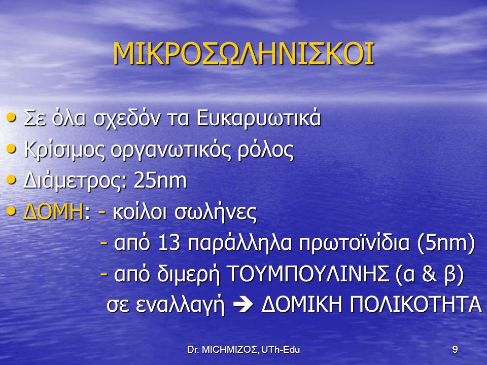 Dr.ΜΙCHΜΙΖΟΣ, UTh-Edu30 ΡΟΛΟΙ ΚΙΝΗΤΗΡΙΩΝ ΠΡΩΤΕΪΝΩΝ ΜΥΟΣΙΝΗ Ι : ΜΥΟΣΙΝΗ Ι : 1.