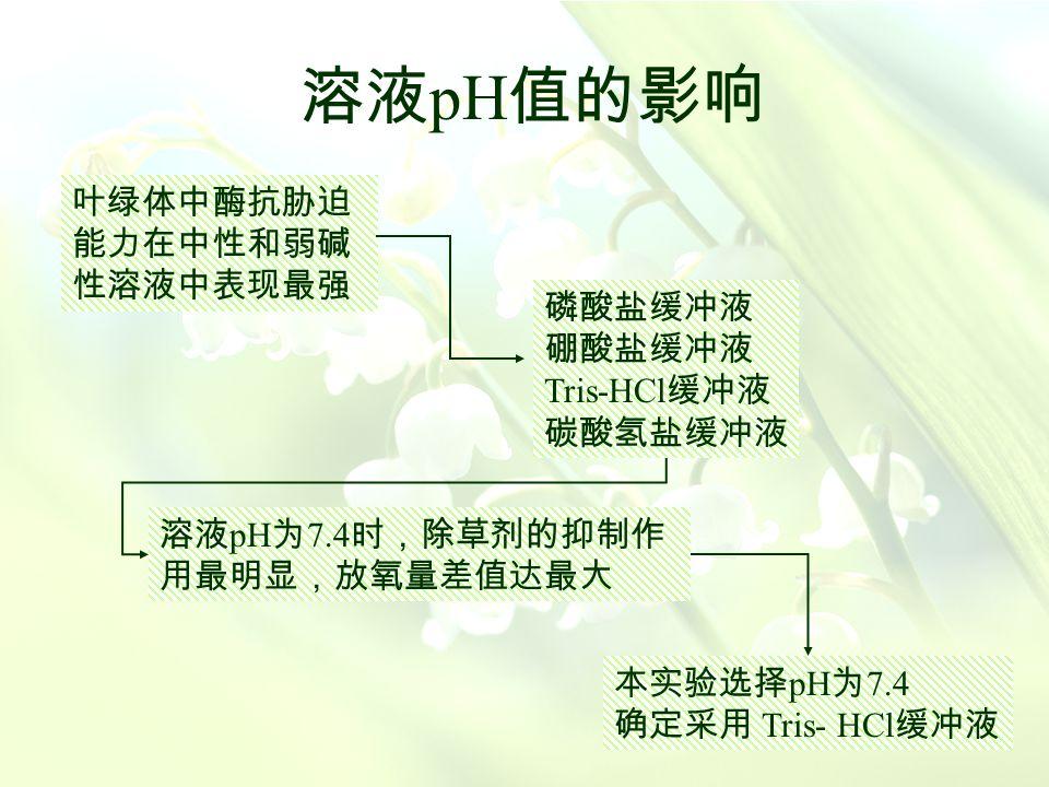 影响因素 叶绿体膜的活性