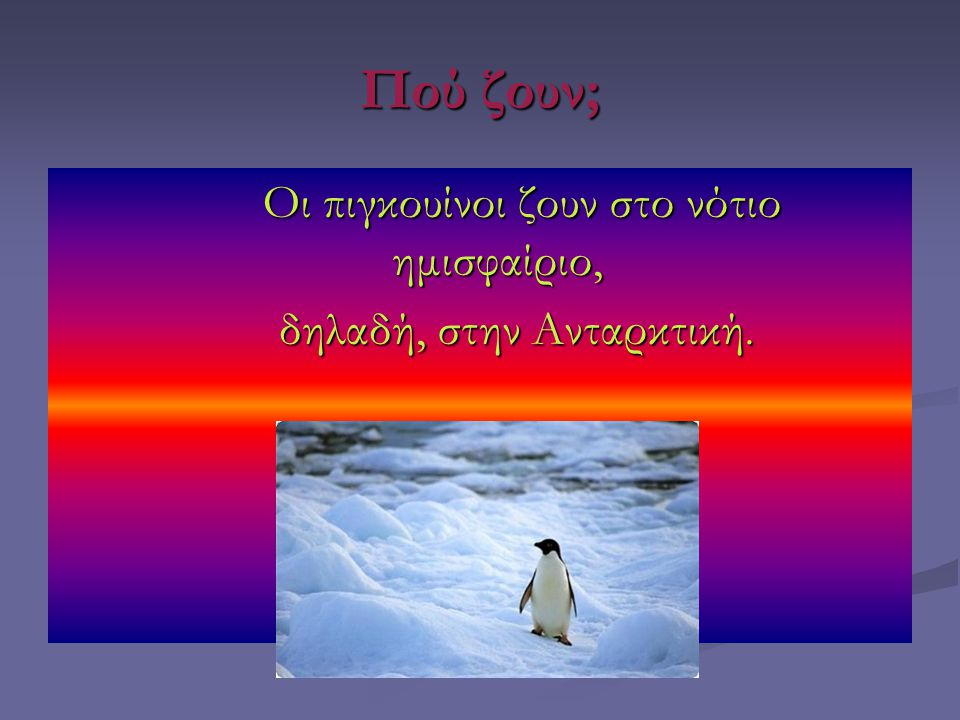 Πού ζουν; Οι πιγκουίνοι ζουν στο νότιο ημισφαίριο, Οι πιγκουίνοι ζουν στο νότιο ημισφαίριο, δηλαδή, στην Ανταρκτική. δηλαδή, στην Ανταρκτική.
