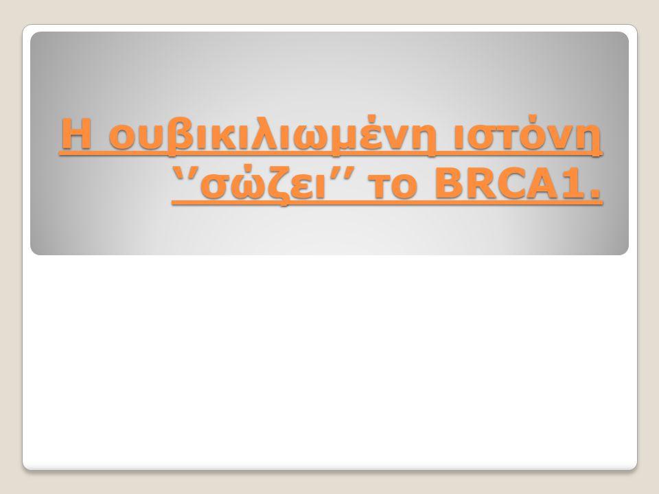 Η ουβικιλιωμένη ιστόνη ''σώζει'' το BRCA1.