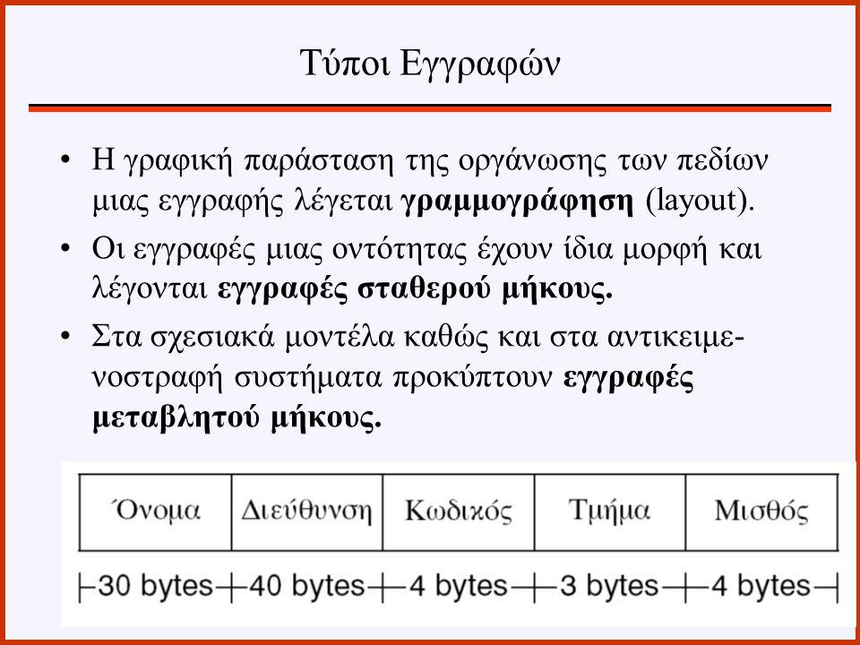 Η γραφική παράσταση της οργάνωσης των πεδίων μιας εγγραφής λέγεται γραμμογράφηση (layout). Οι εγγραφές μιας οντότητας έχουν ίδια μορφή και λέγονται εγ