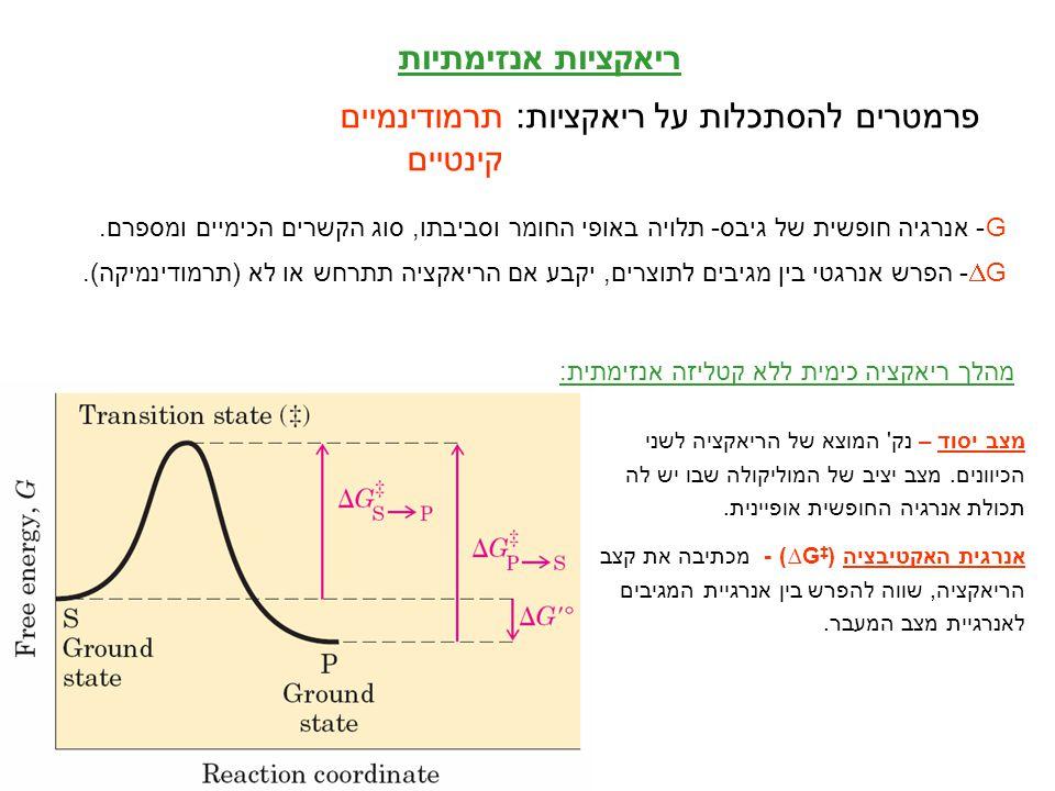 2 ריאקציות אנזימתיות פרמטרים להסתכלות על ריאקציות: תרמודינמיים קינטיים G- אנרגיה חופשית של גיבס- תלויה באופי החומר וסביבתו, סוג הקשרים הכימיים ומספרם.