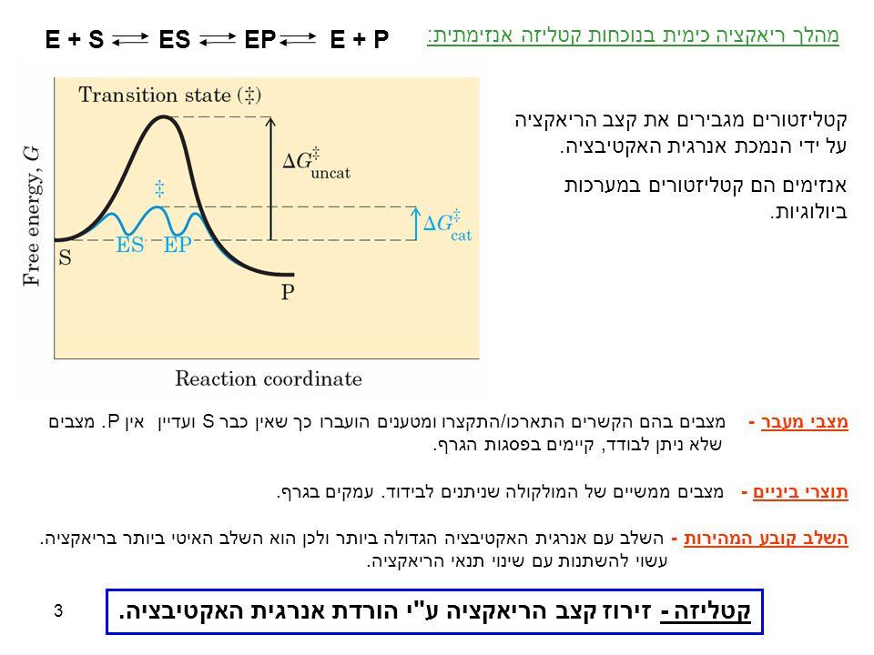 3 מצבי מעבר - מצבים בהם הקשרים התארכו/התקצרו ומטענים הועברו כך שאין כברS ועדיין אין P. מצבים שלא ניתן לבודד, קיימים בפסגות הגרף. תוצרי ביניים - מצבים