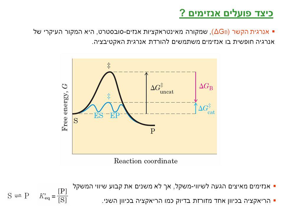 5 כיצד פועלים אנזימים ?  אנרגית הקשר (ΔG B ), שמקורה מאינטראקציות אנזים-סובסטרט, היא המקור העיקרי של אנרגיה חופשית בו אנזימים משתמשים להורדת אנרגית ה