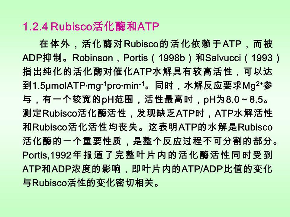 1.2.3 Rubisco 活化酶的作用机制