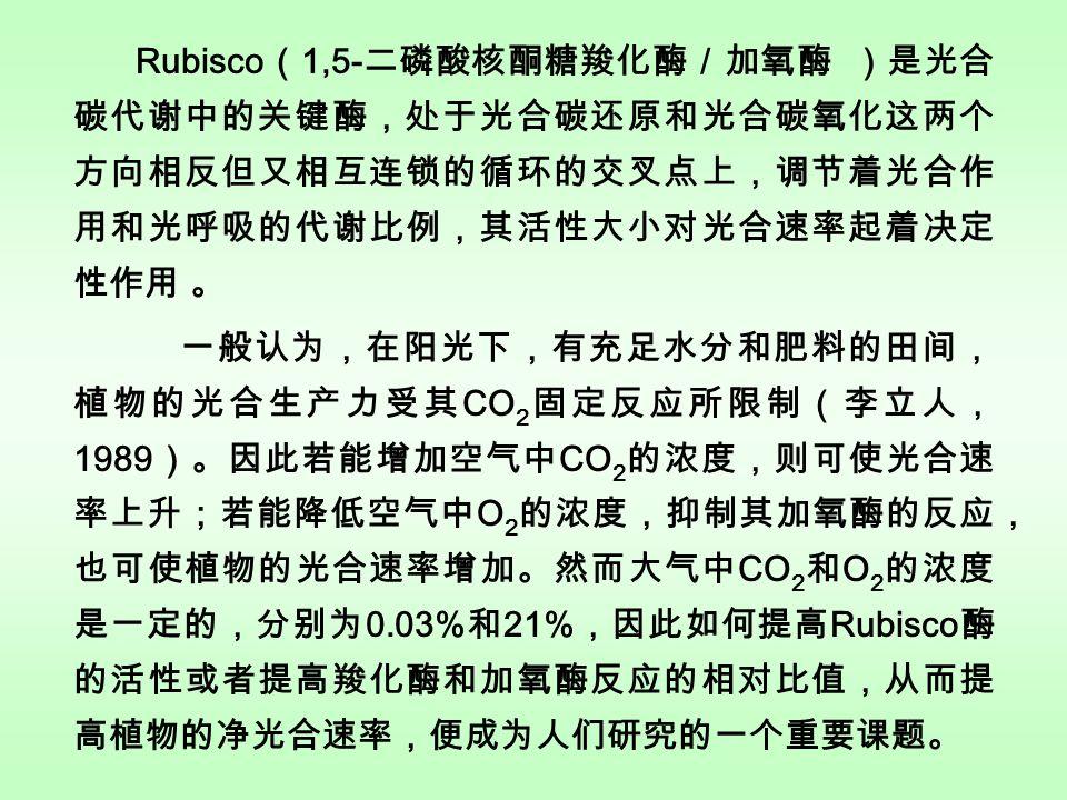 Rubisco ( 1,5- 二磷酸核酮糖羧化酶/加氧酶 )是光合 碳代谢中的关键酶,处于光合碳还原和光合碳氧化这两个 方向相反但又相互连锁的循环的交叉点上,调节着光合作 用和光呼吸的代谢比例,其活性大小对光合速率起着决定 性作用 。 一般认为,在阳光下,有充足水分和肥料的田间, 植物的光合生产力受其 CO 2 固定反应所限制(李立人, 1989 )。因此若能增加空气中 CO 2 的浓度,则可使光合速 率上升;若能降低空气中 O 2 的浓度,抑制其加氧酶的反应, 也可使植物的光合速率增加。然而大气中 CO 2 和 O 2 的浓度 是一定的,分别为 0.03% 和 21% ,因此如何提高 Rubisco 酶 的活性或者提高羧化酶和加氧酶反应的相对比值,从而提 高植物的净光合速率,便成为人们研究的一个重要课题。