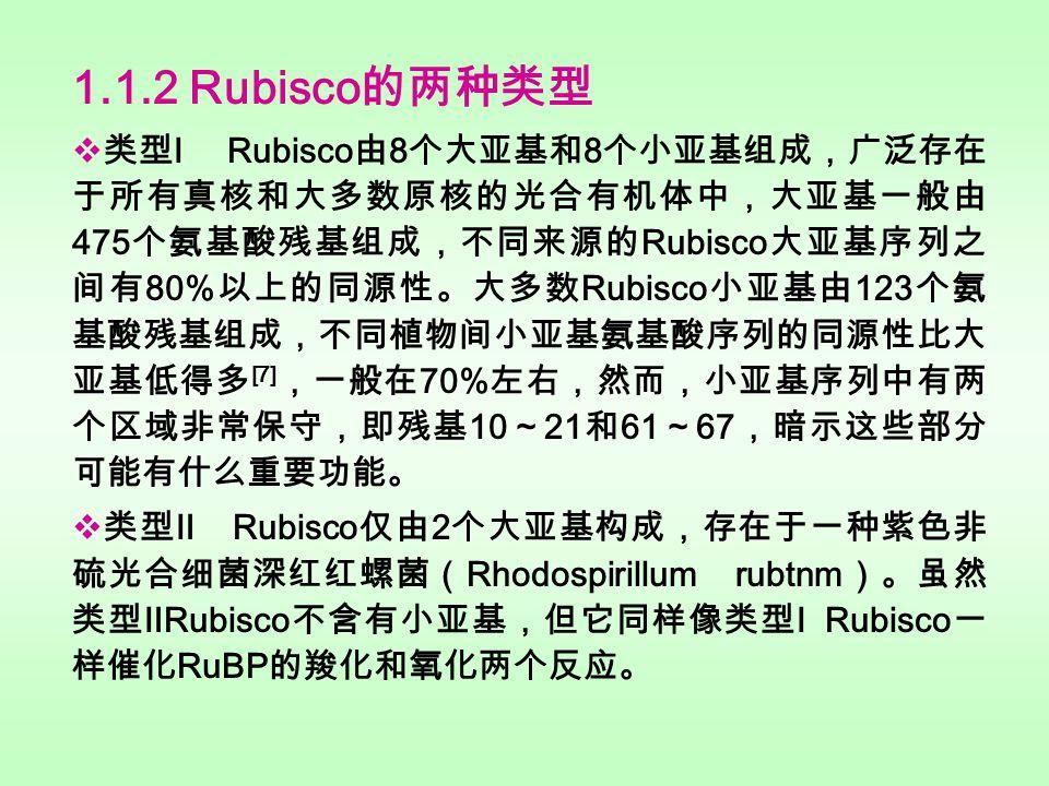 2.4 Rubisco 活 化酶的分离纯化 2.4 Rubisco 活 化酶的分离纯化