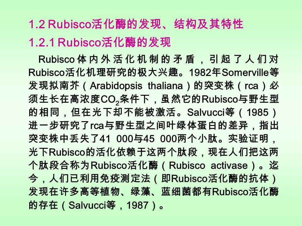 O 2 磷酸乙醇酸 光呼吸 RuBP PGA 光合 碳还原 CO 2 Rubisco 1.1.3 Rubisco 的作用机制