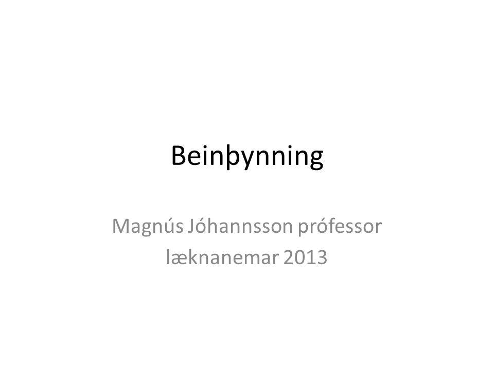 Beinþynning Magnús Jóhannsson prófessor læknanemar 2013