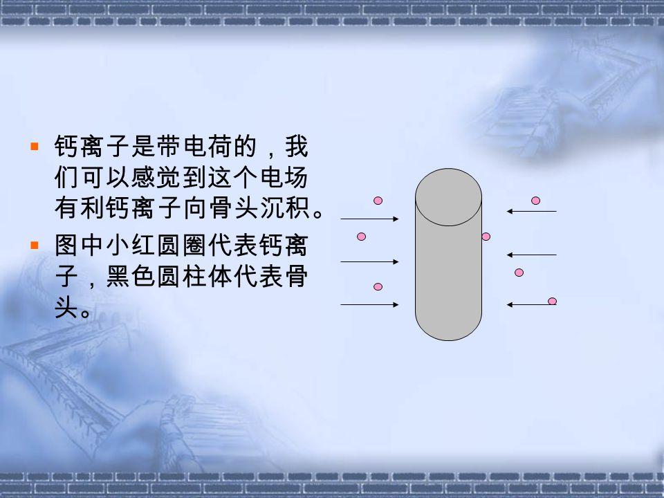  钙离子是带电荷的,我 们可以感觉到这个电场 有利钙离子向骨头沉积。  图中小红圆圈代表钙离 子,黑色圆柱体代表骨 头。