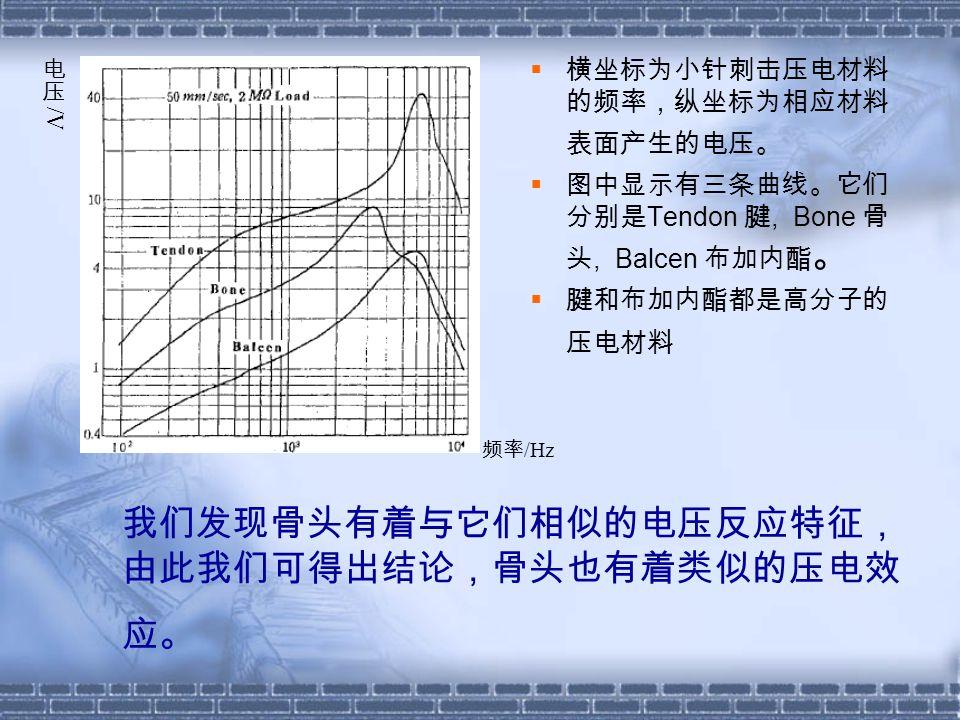 我们发现骨头有着与它们相似的电压反应特征, 由此我们可得出结论,骨头也有着类似的压电效 应。  横坐标为小针刺击压电材料 的频率,纵坐标为相应材料 表面产生的电压。  图中显示有三条曲线。它们 分别是 Tendon 腱, Bone 骨 头, Balcen 布加内酯 。  腱和布加内酯都是高分子的 压电材料 频率 /Hz