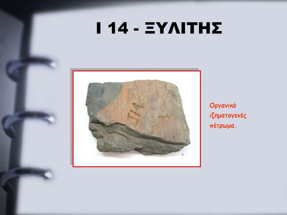 Ι 14 - ΞΥΛΙΤΗΣ Οργανικό ιζηματογενές πέτρωμα.