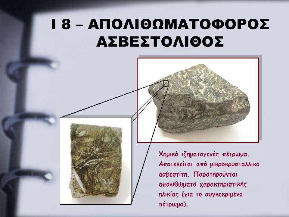 Ι 8 – ΑΠΟΛΙΘΩΜΑΤΟΦΟΡΟΣ ΑΣΒΕΣΤΟΛΙΘΟΣ Χημικό ιζηματογενές πέτρωμα. Αποτελείται από μικροκρυσταλλικό ασβεστίτη. Παρατηρούνται απολιθώματα χαρακτηριστικής