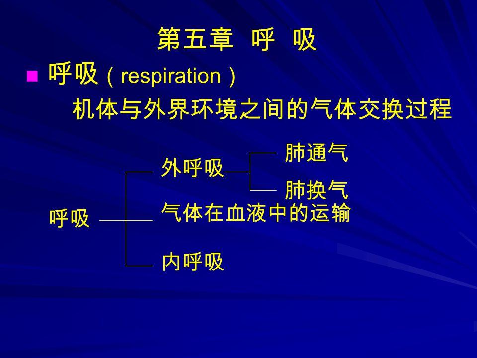 第五章 呼 吸 呼吸 ( respiration ) 机体与外界环境之间的气体交换过程 呼吸 外呼吸 内呼吸 气体在血液中的运输 肺通气 肺换气
