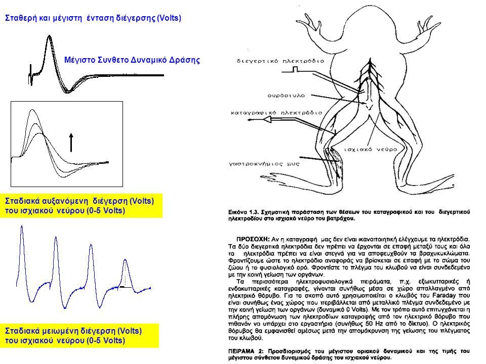 Σταδιακά αυξανόμενη διέγερση (Volts) του ισχιακού νεύρου (0-5 Volts) Σταθερή και μέγιστη ένταση διέγερσης (Volts) Μέγιστο Συνθετο Δυναμικό Δράσης Σταδιακά μειωμένη διέγερση (Volts) του ισχιακού νεύρου (0-5 Volts)