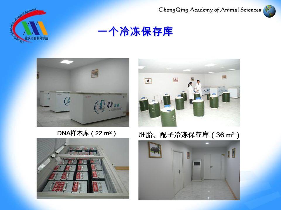 胚胎、配子冷冻保存库( 36 m 2 ) DNA 样本库( 22 m 2 ) 一个冷冻保存库