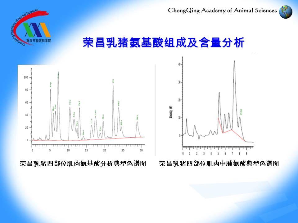 荣昌乳猪氨基酸组成及含量分析 荣昌乳猪四部位肌肉氨基酸分析典型色谱图 荣昌乳猪四部位肌肉中脯氨酸典型色谱图