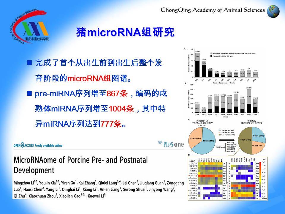 完成了首个从出生前到出生后整个发 育阶段的 microRNA 组图谱。 pre-miRNA 序列增至 867 条,编码的成 熟体 miRNA 序列增至 1004 条,其中特 异 miRNA 序列达到 777 条。 猪 microRNA 组研究
