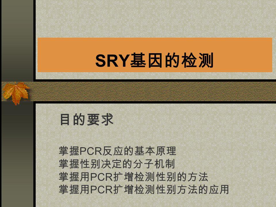 SRY 基因的检测 目的要求 掌握 PCR 反应的基本原理 掌握性别决定的分子机制 掌握用 PCR 扩增检测性别的方法 掌握用 PCR 扩增检测性别方法的应用