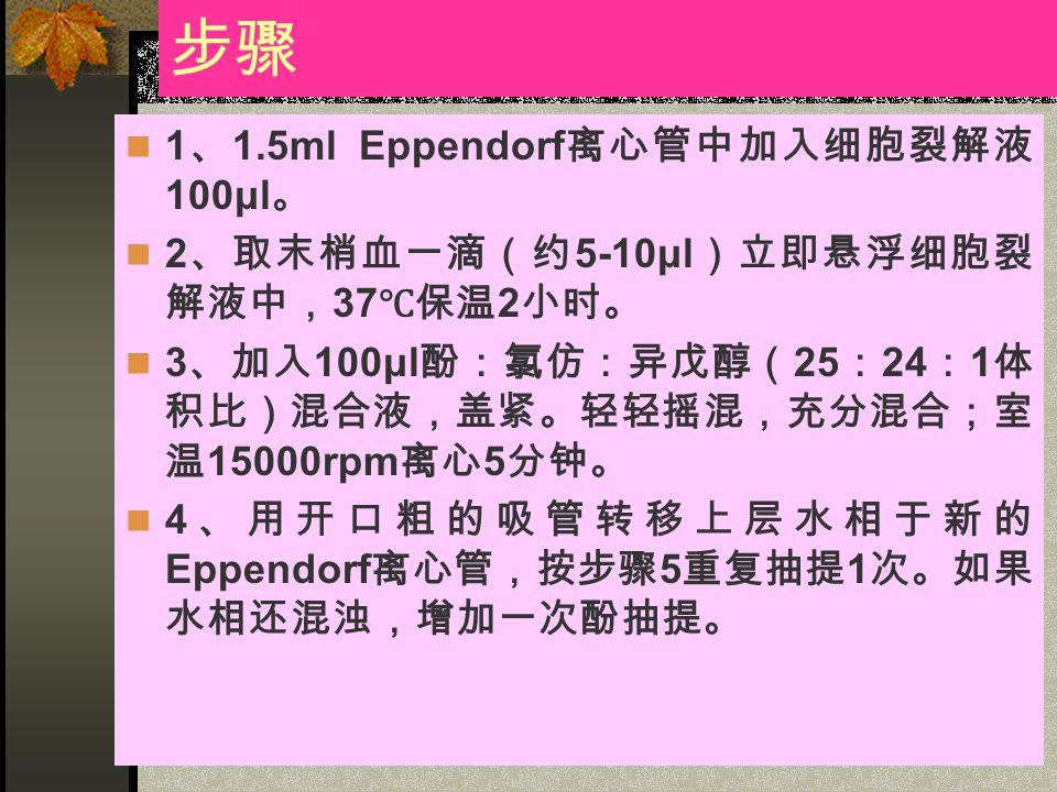 步骤 1 、 1.5ml Eppendorf 离心管中加入细胞裂解液 100μl 。 2 、取末梢血一滴(约 5-10μl )立即悬浮细胞裂 解液中, 37 ℃保温 2 小时。 3 、加入 100μl 酚:氯仿:异戊醇( 25 : 24 : 1 体 积比)混合液,盖紧。轻轻摇混,充分混合;室 温 1