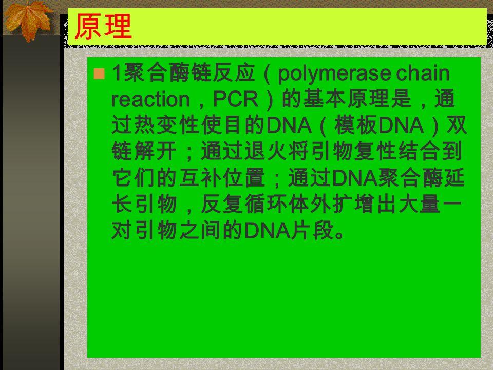 原理 1 聚合酶链反应( polymerase chain reaction , PCR )的基本原理是,通 过热变性使目的 DNA (模板 DNA )双 链解开;通过退火将引物复性结合到 它们的互补位置;通过 DNA 聚合酶延 长引物,反复循环体外扩增出大量一 对引物之间的 DNA 片段。