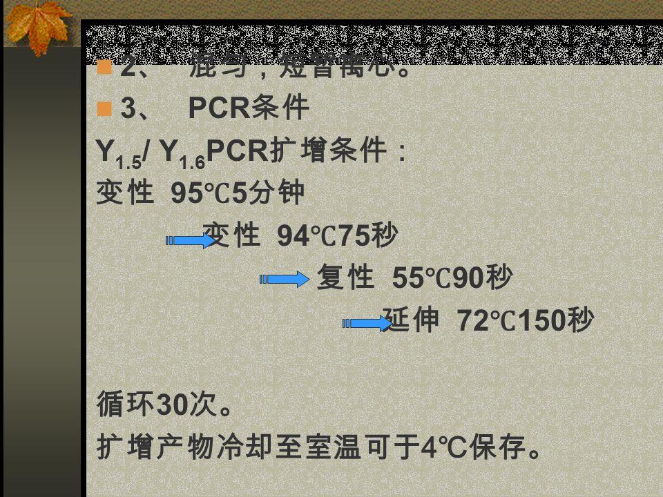 2 、 混匀,短暂离心。 3 、 PCR 条件 Y 1.5 / Y 1.6 PCR 扩增条件: 变性 95 ℃ 5 分钟 变性 94 ℃ 75 秒 复性 55 ℃ 90 秒 延伸 72 ℃ 150 秒 循环 30 次。 扩增产物冷却至室温可于 4 ℃保存。